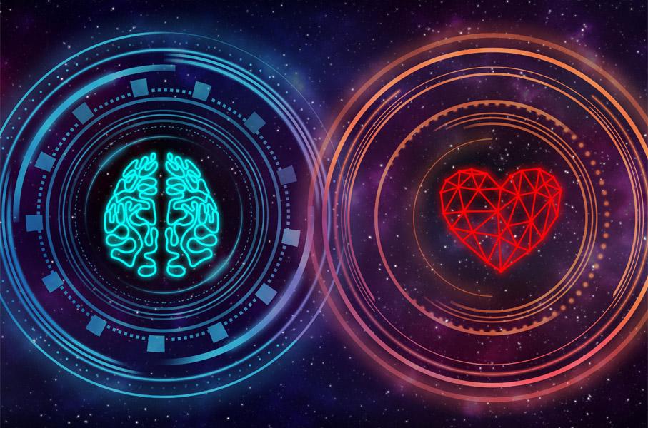 lien entre coeur et cerveau